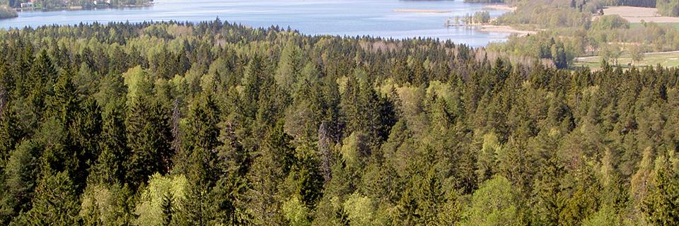 Aulangon ulkoilu- ja luonnonsuojelualue